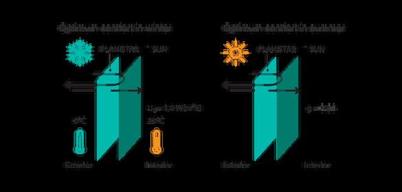 Planistar Sun Glass